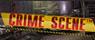 CrimeSceneSlot